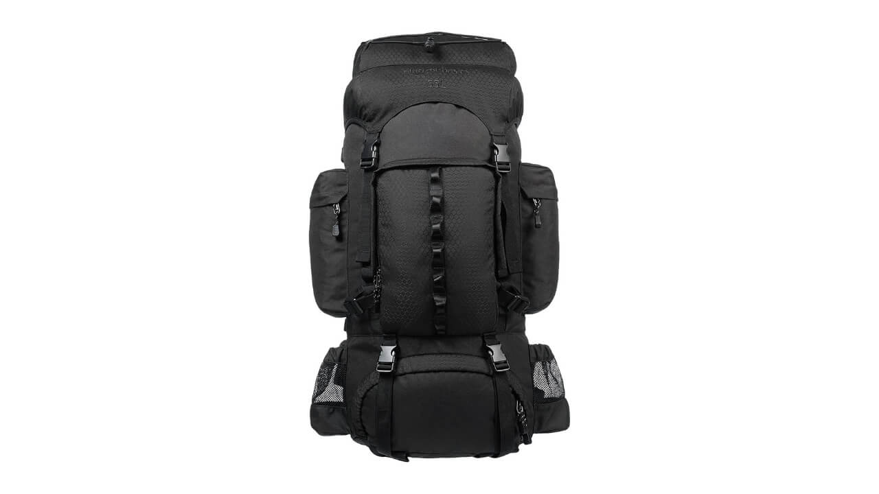 AmazonBsic Best External Frame Backpack