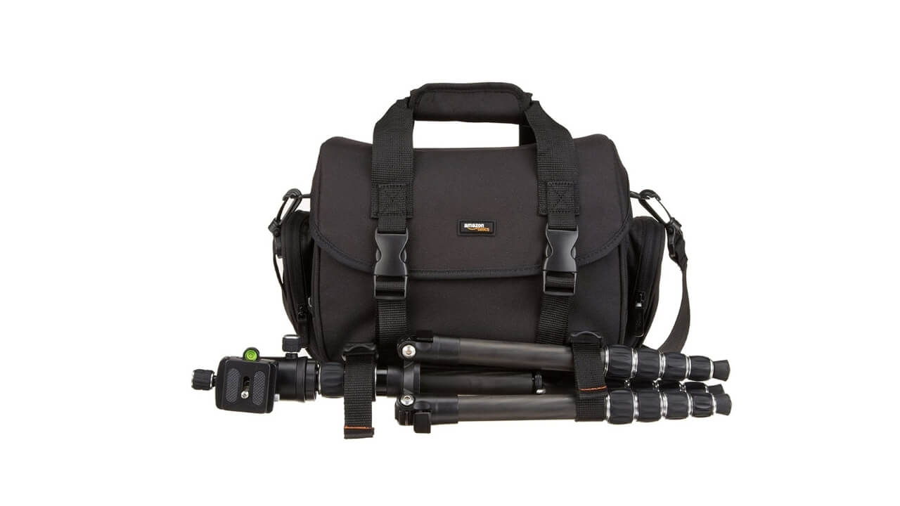 AmazonBasic Mirrorless Camera Bag