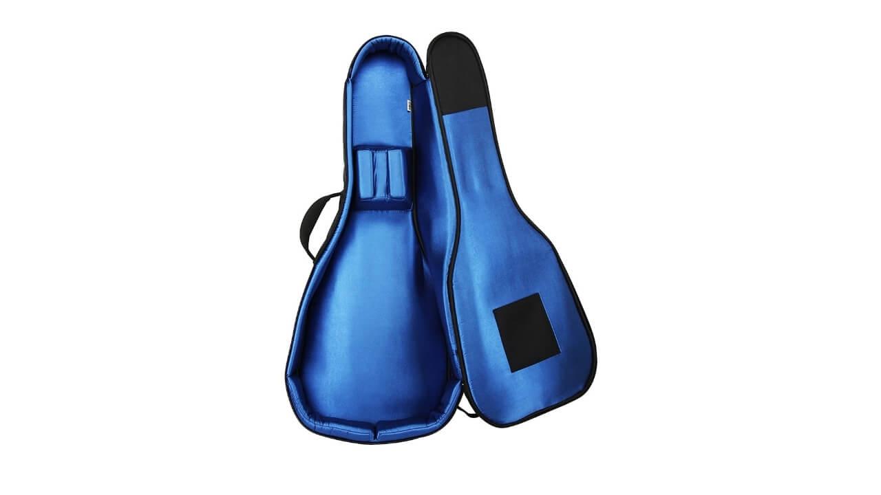 Reunion Blues RBXA2 Guitar Bag